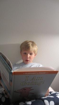 E reading