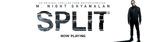 Split movie